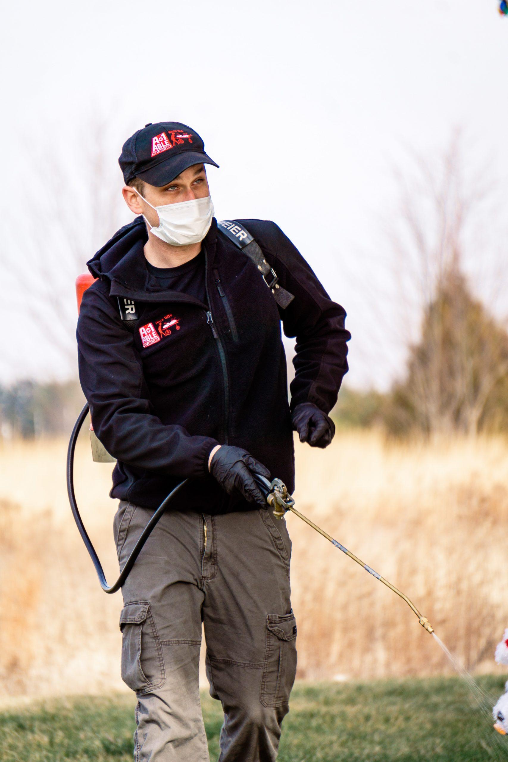 pest control expert sprays for pest prevention